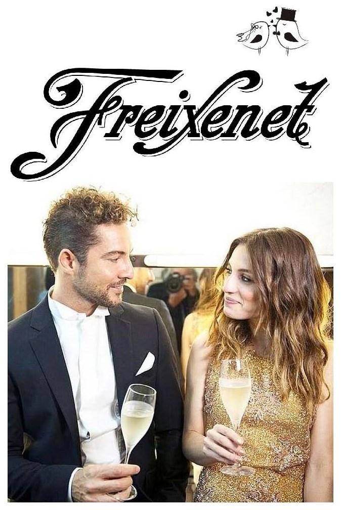 Freixenet bodas 2014.