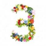 3-flores-150x150
