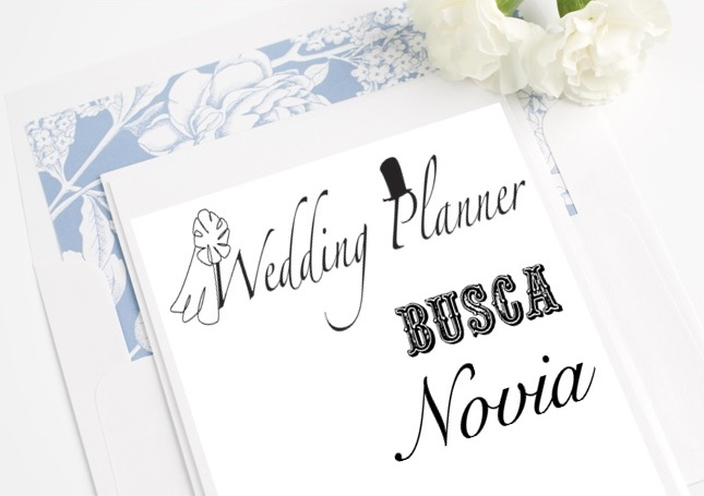 wedding planner busca novia